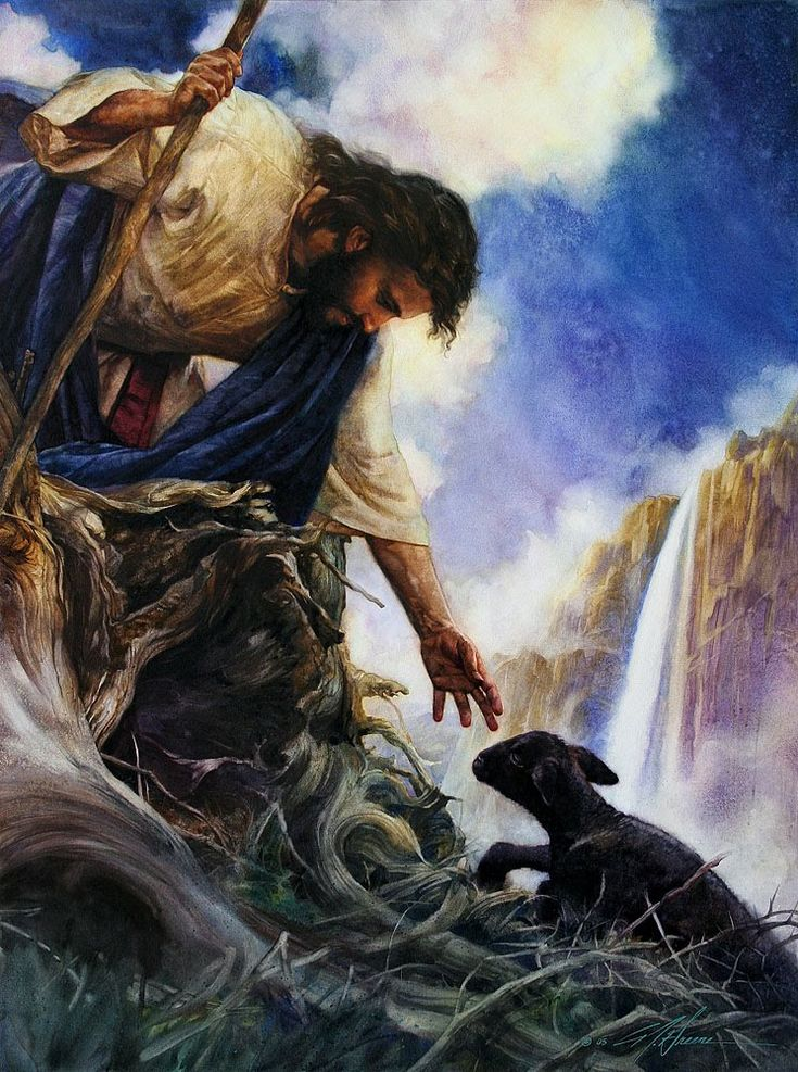 Rejoice with me, for I have found my sheep that was lost.' I tell you, there will be more joy in heaven over one sinner who repents than over ninety-nine righteous persons who need no repentance. Luke 15:6-7