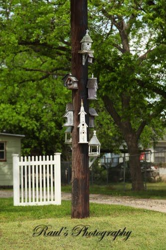 Birdhouses!!!