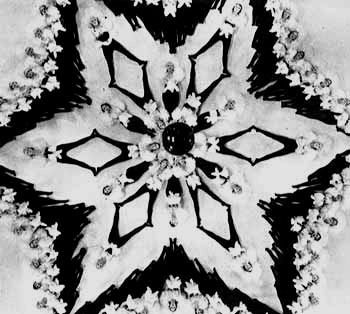 They're tessellated (if you squint hard and make sure there are no margins) and fractal-like, very organic, very much looking like diagrams outlining the mathematical forms of nature.  And they're pretty.  Look closely at the picture (and see more at the link)  it's made by an overhead camera of people.  Choreographed by Busby Berkeley Musicals