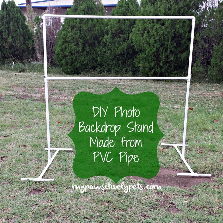 DIY Photo Backdrop Stand for Pets Diy photo backdrop
