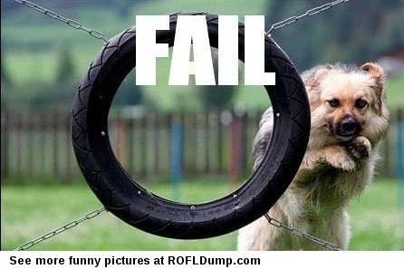 Go put your glasses #meme #funny #fail #dog #lol