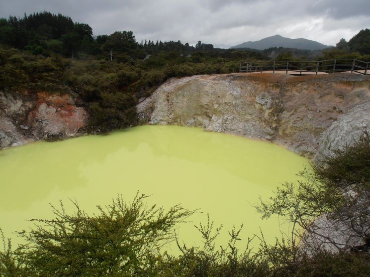 I think there is copper in this poisonous  pool