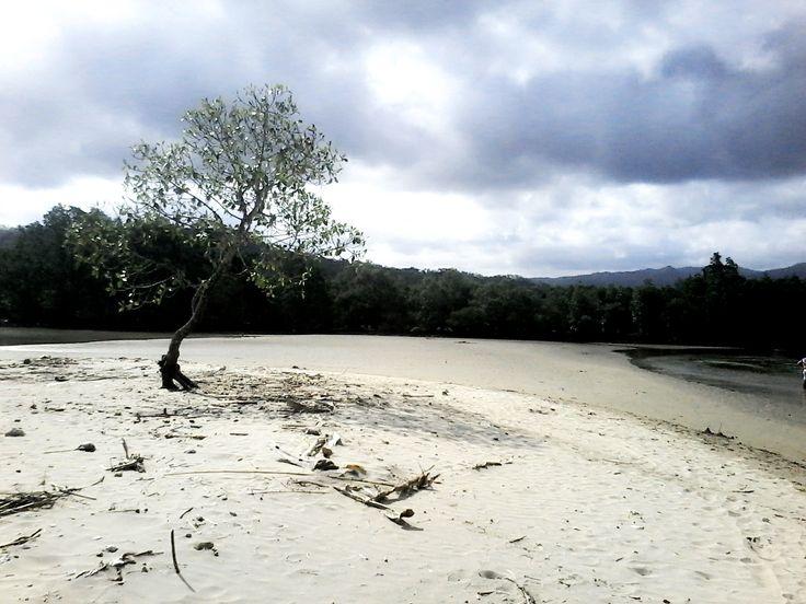 panorama pinggiran pantai