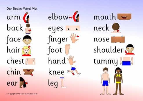 Ned. versie: Our bodies word mat (SB3338) - SparkleBox