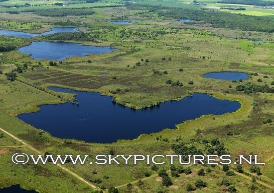 Natuurgebied de Peel bij Meijel