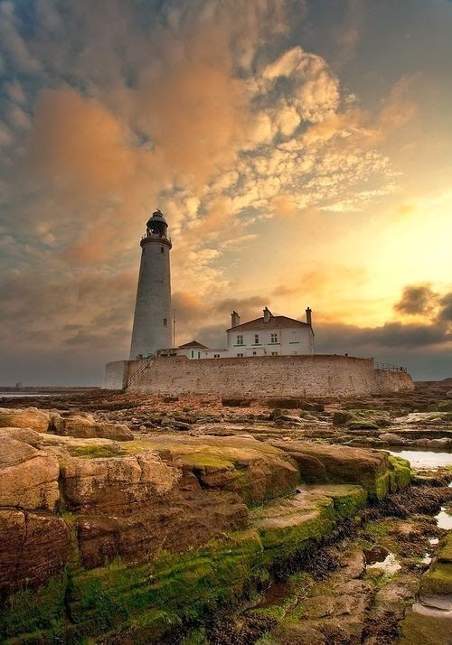 St Mary's Lighthouse, Northumberland, Great Britain - Explore the World with Travel Nerd Nici, one Country at a Time. http://TravelNerdNici.com
