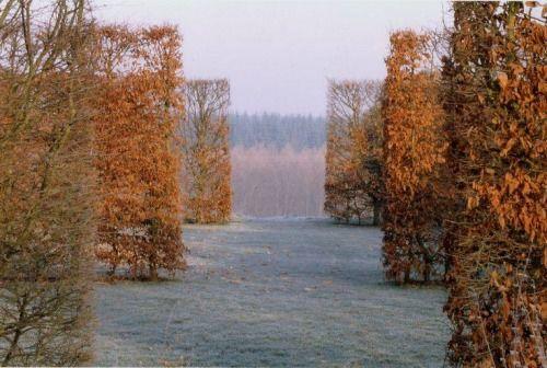 birdcagewalk: floresenelatico:West garden | Tom Stuart-Smith