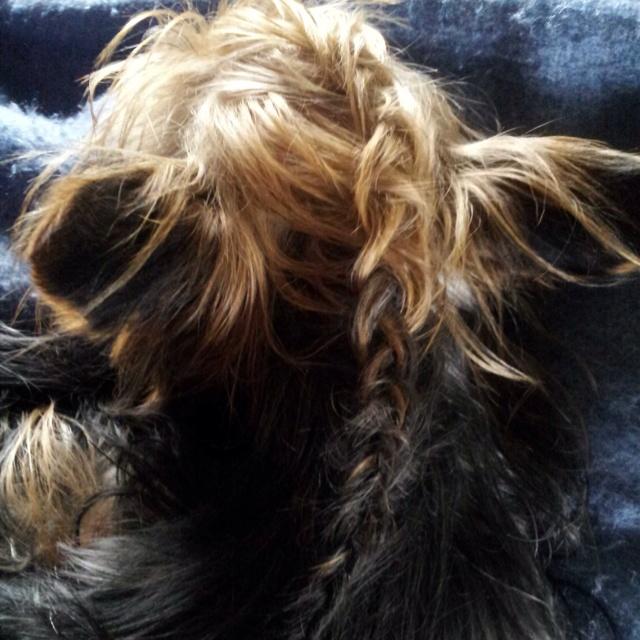 Braiding Lil's hair!