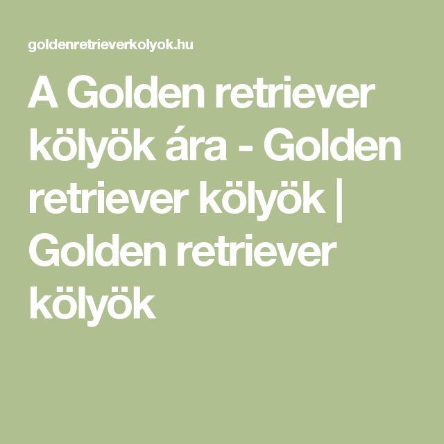 A Golden retriever kölyök ára - Golden retriever kölyök | Golden retriever kölyök