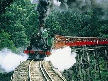 Belgrave // Puffing Billy