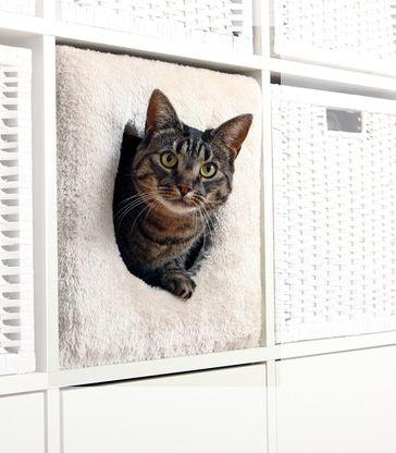 Kattgömma sovplats passar till IKEAs möbler Expedit och Kallax. Smart inredningsprodukt till din katt och ditt hem.