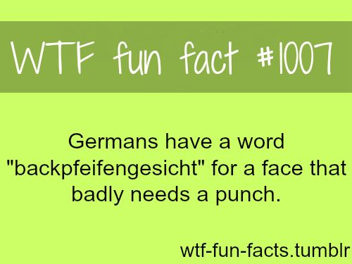 best 25 funny german words ideas on pinterest deutsch language funny german phrases and. Black Bedroom Furniture Sets. Home Design Ideas