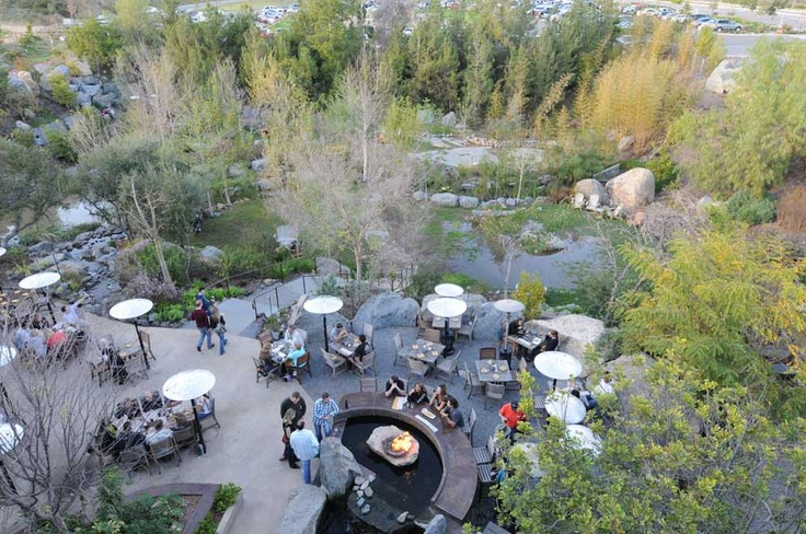 We should have gone here while we were down there. Stone Brewery - Beautiful Gardens  Escondido