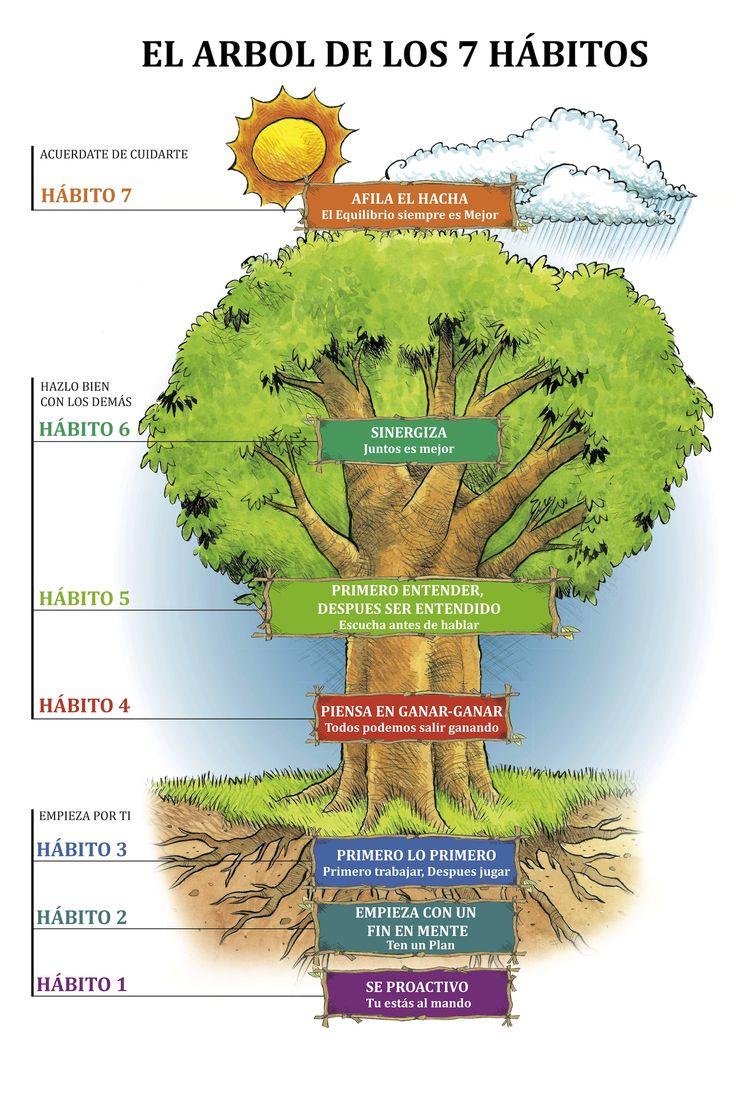 El rbol de los h bitos coaching pinterest classroom for 7 habits tree mural