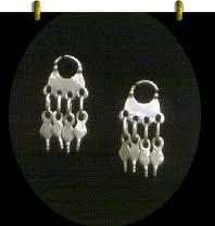 Plateria mapuchw