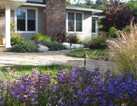 Landscape Designer, San Anselmo, Dig Your Garden Creates Beautiful,  Eco Friendly Landscapes And Garden Designs For Marin County And SF Bay Area  Residences.