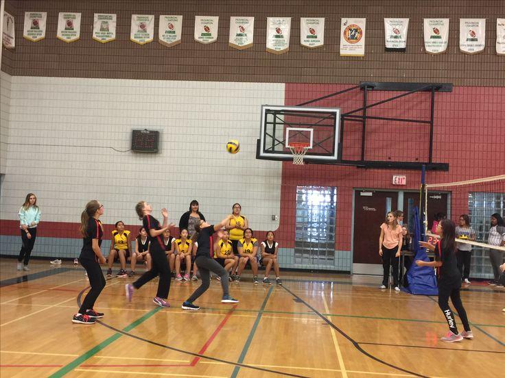 Basketball.  Melinda gr 7.  2015/16