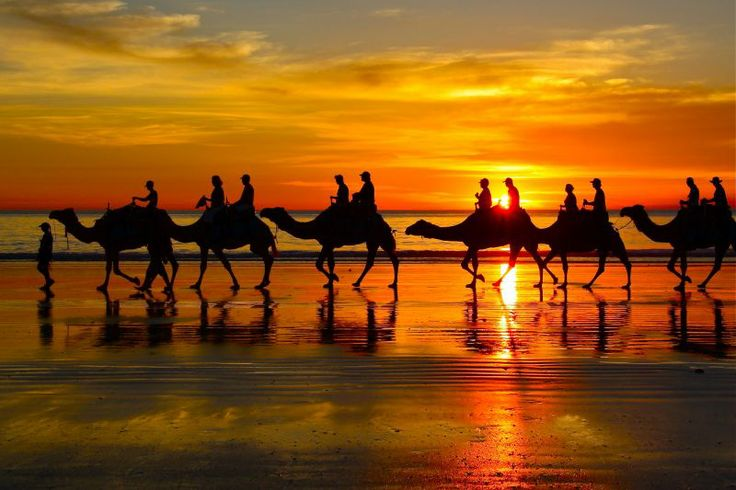 Cable Beach Camel Riding Australia