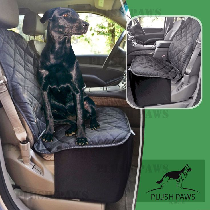 11 best Dog car accessories images on Pinterest | Car accessories ...