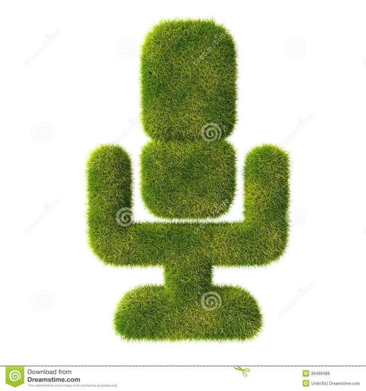 Neat icon. From www.dreamstime.com. Yes, this is a grass microphone. Use to denote:  --Voice memos.   --Quotes on green living.  --Design plans for microphone-shaped topiary.  --Design plans for audio surveillance equipment concealed within microphone-shaped topiary.  --Interview with golf course maintenance staff.   *** This is not the last time you will see the phrase 'grass microphone.' ***