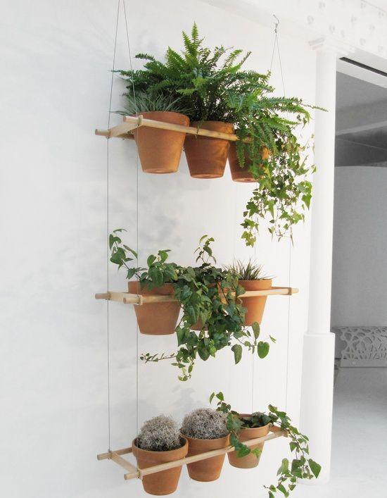 13 best images about plant divider on pinterest