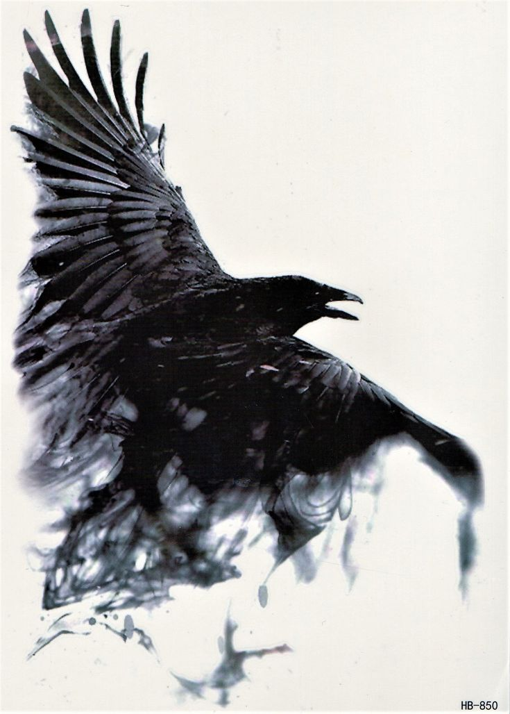 Bird Dark Shadow Ghost Crow Tattoo Temporary Tattoo 5,9×8,2 inch HB850