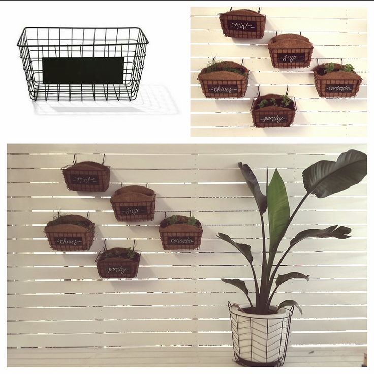 Herb garden baskets - line kmart black wire baskets with planter liners and hook these onto a slatted wall to create a vertical herb garden.
