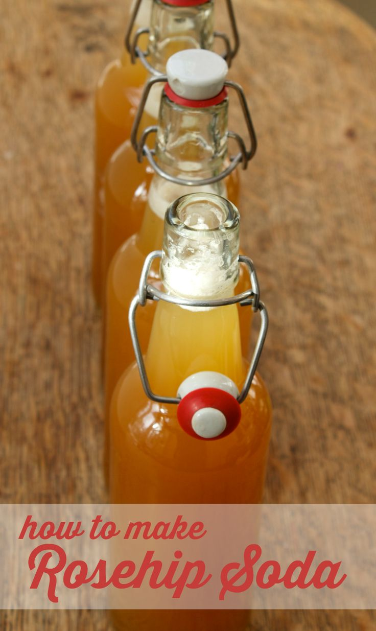 How to make rosehip soda - this old-fashioned recipe is fermented so it's actually a healthy, probiotic soda.