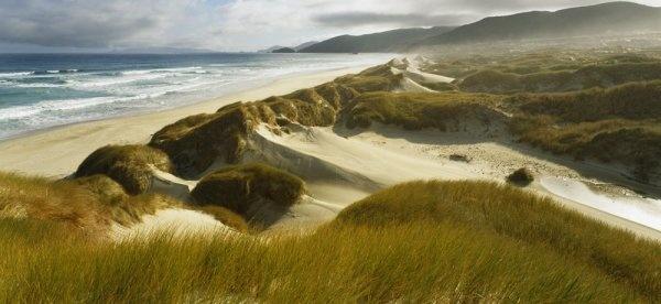 Stewart Island. Mason Bay. View looking over sand dunes, tussocks and beach