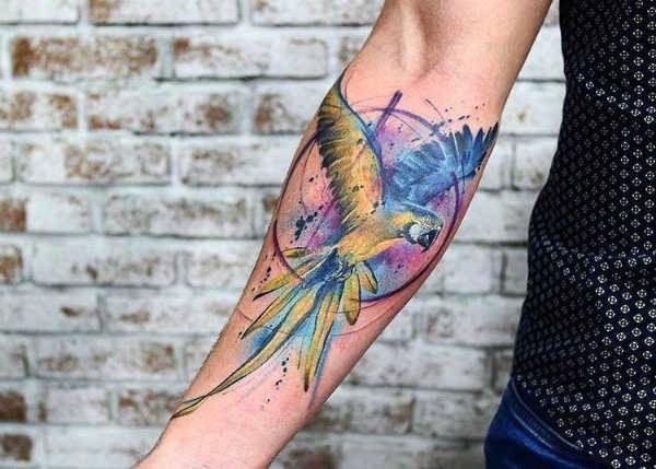Tatuaż Papuga Znaczenie Historia 30 Zdjęć Tatuaże