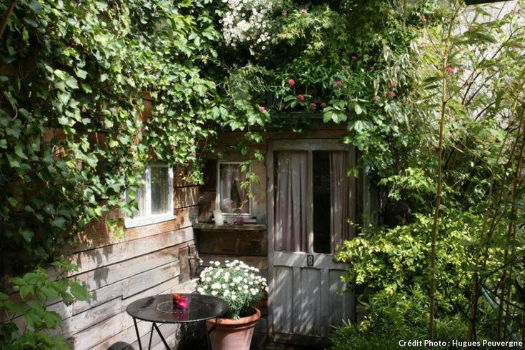 Les 27 meilleures images propos de serre et abris de for Cendre de bois dans le jardin
