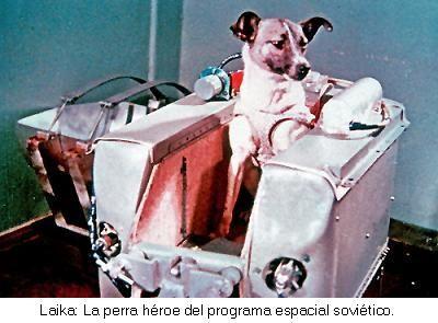 ไลก้าสุนัขอวกาศ ก้าวแรกสำคัญของมนุษยชาติ