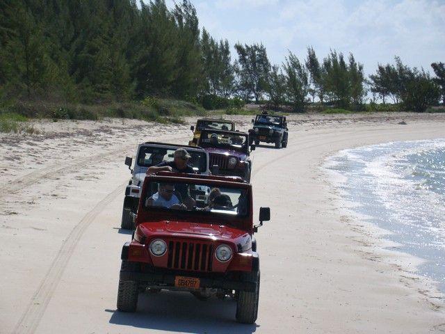 Take A Drive On The Wild Side Bahamas Jeep Adventure