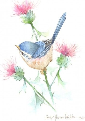 Thistle Stop - Carolyn Shores Wright
