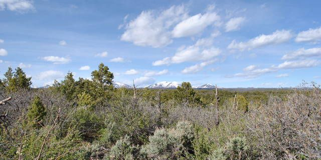Scenic views from this 35+ acre lot! Well on site makes this property a great find. Visit our website http://samanthagallant.com/ or contact us (970) 335 - 8225  for more details