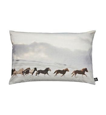 Icelandic Horses pillow