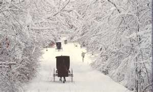 Winter in Wisconsin's Amish country: Amish Wonderland, Simple Life, Amish Culture, Order Amish, Holmes County, Amish Country, Amish Winter, Amish Lifestyle, Amish Living