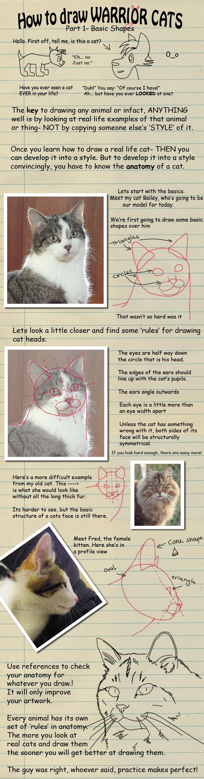 114 best How to draw : CATS images on Pinterest | Drawings of cats ...