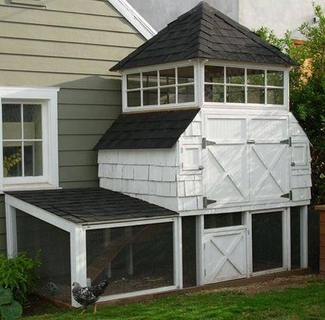 3 story chicken-coop urban