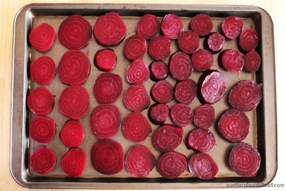 We love beets, they are extremely healthy and just so good. We like to grow Cylindra, a very sweet Heirloom beet that grows in a long cylindrical shape. Very nice for slicing. Beets store well for a couple months if stored in a cool dark place. My favorite way to preserve beets though is by ...
