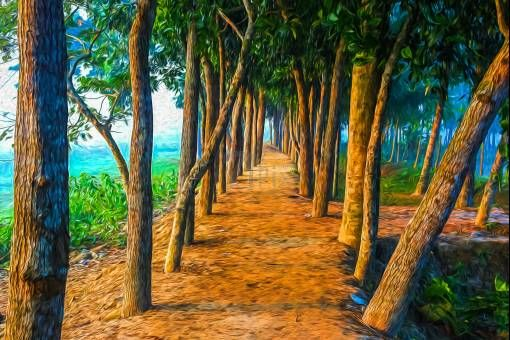 Way to Heaven... by Dr.Tanvir on 71pix.com
