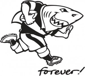 KZN Sharks rugby  #EasyPin