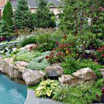 6 The Hgtv Landscape Ideas