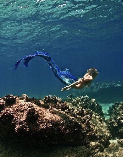 Glamour Mermaids / Karen Cox. I believe in mermaids.