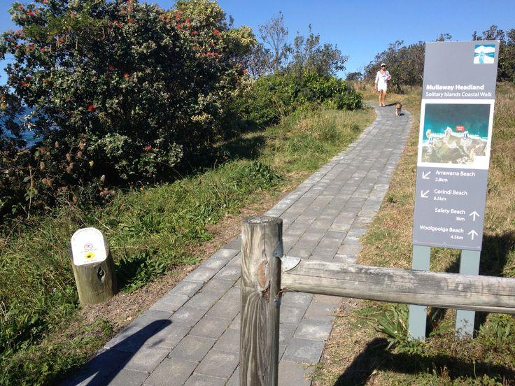Mullaway Headland, Solitary Islands Coastal Walk, NSW.