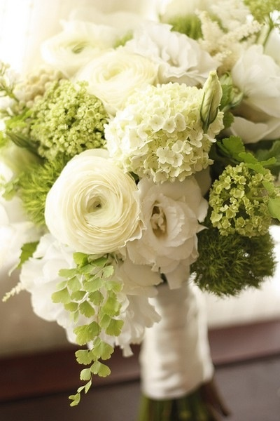White ranunculus, cream mini hydrangea, green mini hydrangea, white lisianthus, moss, adiantum fern. Amber's wedding bouquet.