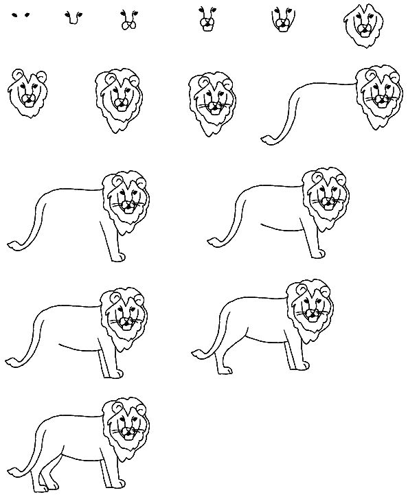 apprendre a dessiner un lion dessiner pinterest lion. Black Bedroom Furniture Sets. Home Design Ideas
