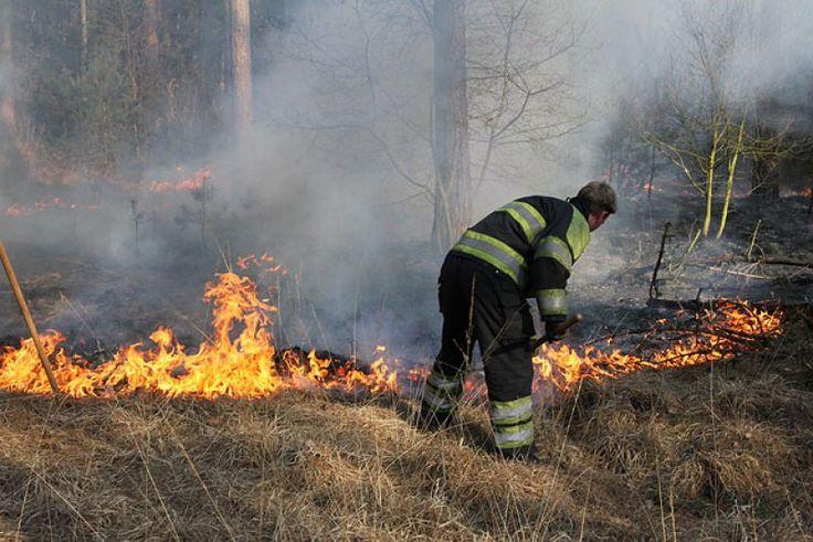 Beheren bosbrand Een bosbrand kun je proberen te beheren door open paden door het bos te creëren zodat het vuur niet kan overslaan naar de andere percelen. ook kun je juist de paden door het bos goed begaanbaar maken voor de brandweer zodat ze snel ter plaatse kunnen zijn.