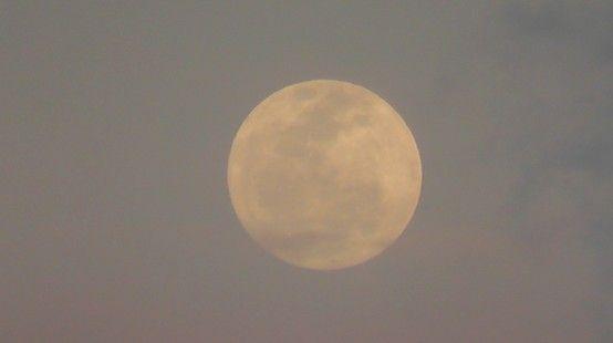 Super Moon RIsing As The Sun Sets -  #moon #supermoon #nature