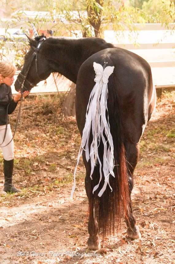 Unicorn Horn Costume for Real Live Horse by Rideyourdreams on Etsy